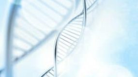 The Baldness Gene – Treatment To Reduce Hair Loss in Men & Women